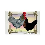 Black SL Chickens Rectangle Magnet (100 pack)