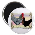"Black SL Chickens 2.25"" Magnet (100 pack)"