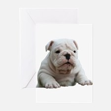 British Bulldog Greeting Cards (Pk of 10)