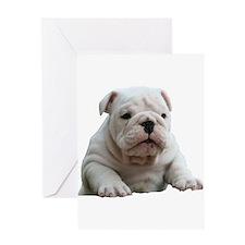 British Bulldog Greeting Card
