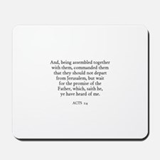 ACTS  1:4 Mousepad