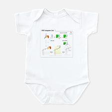 Enzyme Infant Bodysuit
