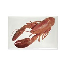 A Lobster on Your Rectangle Magnet (10 pack)