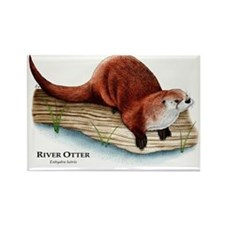 Northern River Otter Rectangle Magnet