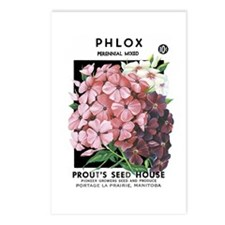Phlox Postcards (Package of 8)