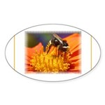 Pollination Oval Sticker