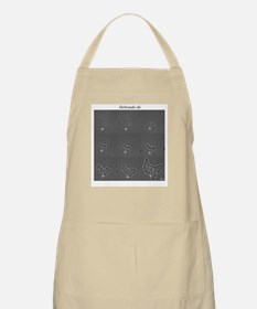 Dividing Bacteria on BBQ Apron