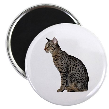 Savannah Cat Magnet