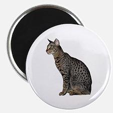 Savannah Cat Magnet