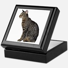 Savannah Cat Keepsake Box