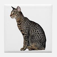 Savannah Cat Tile Coaster