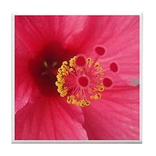 Pink Hibiscus Tile Coaster