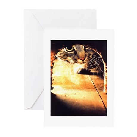 Cat and Mouse Greeting Cards (Pk of 10)