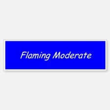 Flaming Moderate Bumper Bumper Bumper Sticker