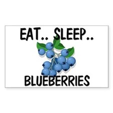 Eat ... Sleep ... BLUEBERRIES Rectangle Decal