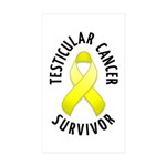 Testicular Cancer Survivor Rectangle Sticker 50 p