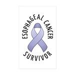 Esophageal Cancer Survivor Rectangle Sticker 50 p