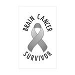 Brain Cancer Survivor Rectangle Sticker 50 pk)