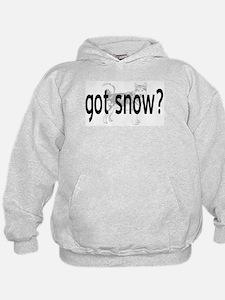 Got Snow? Hoodie