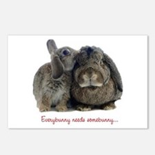 Everybunny needs somebunny Postcards (Package of 8