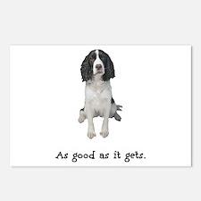 Good Springer Spaniel Postcards (Package of 8)