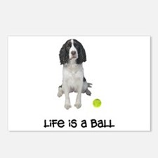 Springer Spaniel Life Postcards (Package of 8)