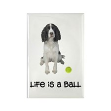 Springer Spaniel Life Rectangle Magnet