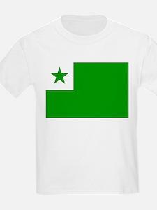 Esperanta Flago T-Shirt