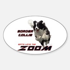BC ZOOM Oval Decal