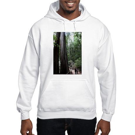 Muir Woods, California Hooded Sweatshirt