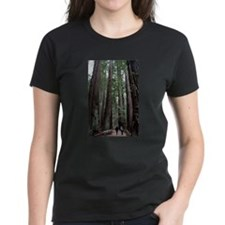 Muir Woods, California Tee
