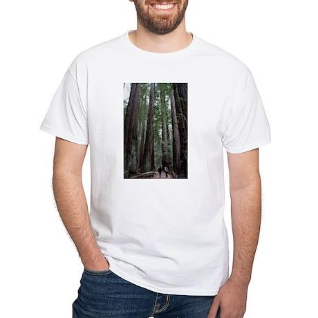 Muir Woods, California White T-Shirt
