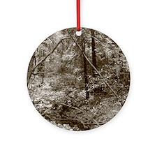 Muir Woods, California Ornament (Round)