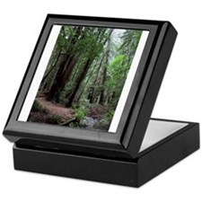 Muir Woods, California Keepsake Box