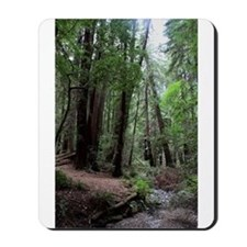 Muir Woods, California Mousepad