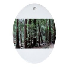 Muir Woods, California Oval Ornament