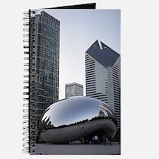 Chicago, Illinois Journal