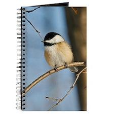Black Capped Chickadee Journal
