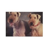 Airedales Magnets