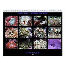 Reef Life I Wall Calendar