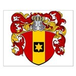 Scholten Family Crest Small Poster