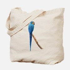 hyacinth macaw Tote Bag