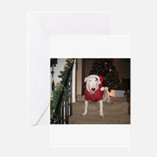 Unique English bull terrier Greeting Card