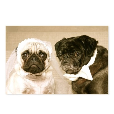 The Snug Pug Postcards (Package of 8)