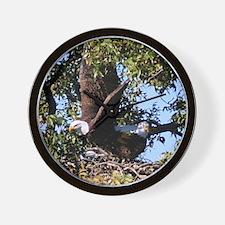Llano county bald eagle Wall Clock