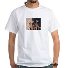 Cute Airedale terrier Shirt