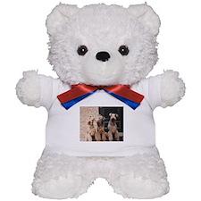 Cute Katy Teddy Bear
