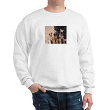 Unique Katy Sweatshirt