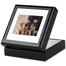 Cute Airedale terrier Keepsake Box