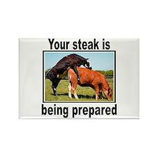 Steak Rectangle Magnet